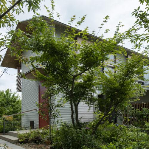 木の家で緑あふれる暮らし 緑生い茂る外構